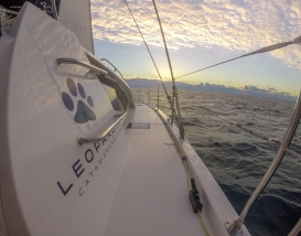 Leopard 40 - Sunrise
